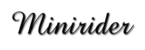 MINIRIDER
